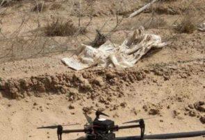 رژیم صهیونیستی مدعی سرنگونی یک پهپاد در غزه شد